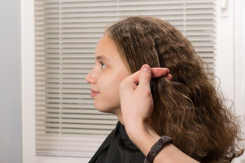 De handen van de stilist houden een haarlok alvorens te schilderen stock afbeelding