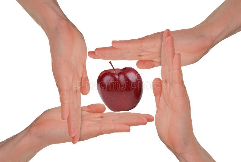 De handen van vrouwen rond een Appel stock illustratie