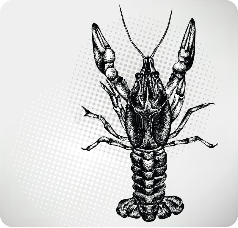 De handtekening van rivierkreeften. Vector illustratie. stock illustratie
