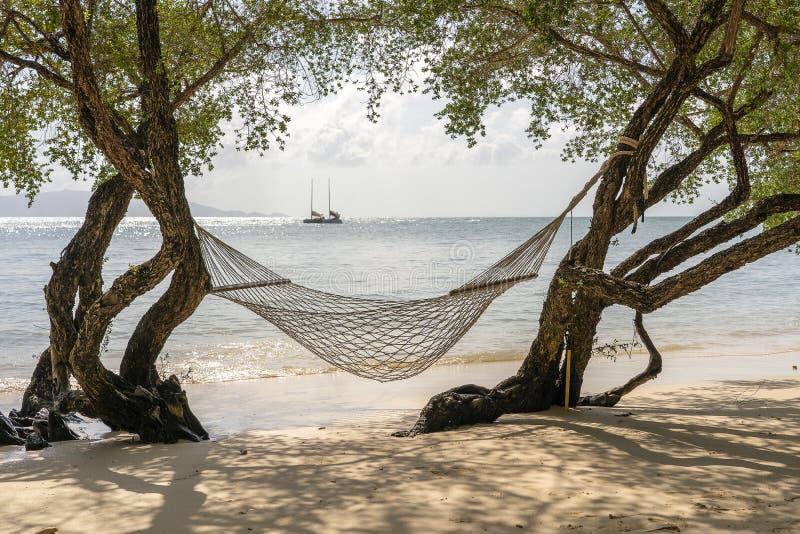 De hangmat hangt van tropische boom over het strandoverzees van het de zomerzand in Phangan-eiland, Thailand De zomer, Reis, Vaka royalty-vrije stock foto