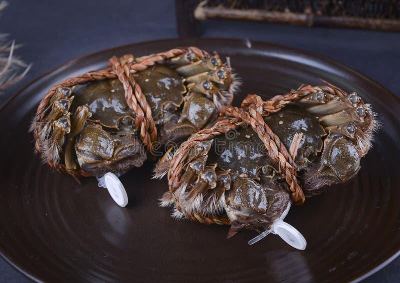De harige krab van het Yangchengmeer, suzhoustad royalty-vrije stock foto's