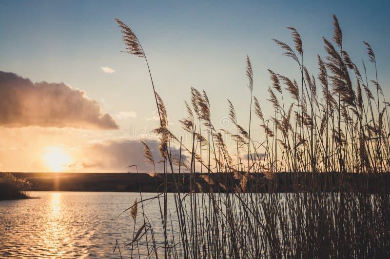 De harmonie van aard Een stille zonsondergang over het meer in de vroege lente royalty-vrije stock fotografie