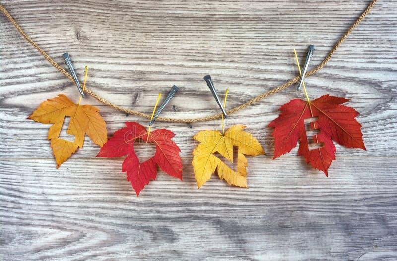 De harten van de liefde op kleurrijke de herfstbladeren met houten achtergrond royalty-vrije stock foto