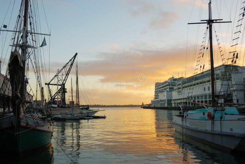 De Haven van Auckland bij dageraad stock afbeelding