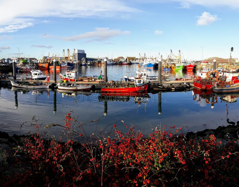 De haven van Dublin - Howth stock afbeelding