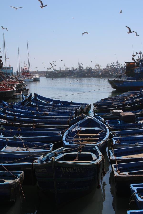 De Haven van Essaouira, Marokko stock fotografie