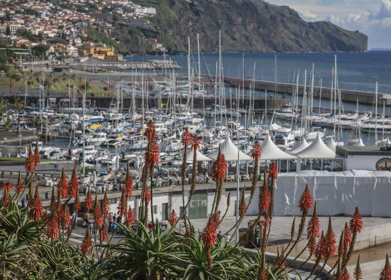 De haven van Funchal - zonnig December in Madera stock fotografie
