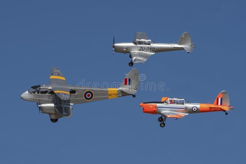 De Havilland Dragon Rapide avec une paire de tamia photographie stock libre de droits