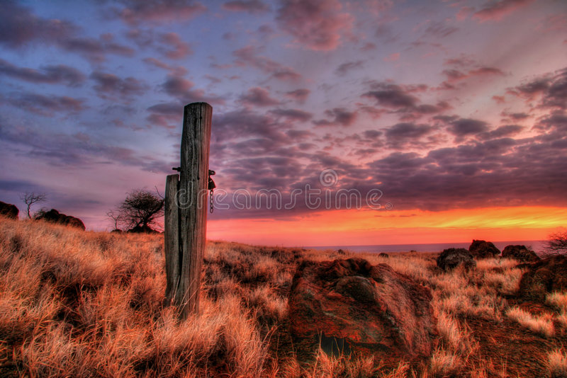 De Hawaiiaanse zonsondergang stock illustratie