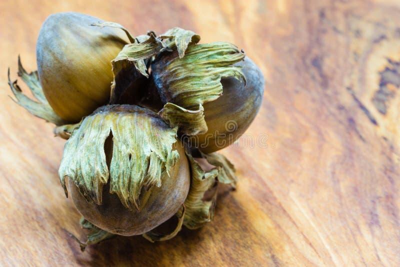 Download De Hazelnootnoten Van De Hazelnotencluster In Harde Shell Stock Foto - Afbeelding bestaande uit oogst, daling: 54091250