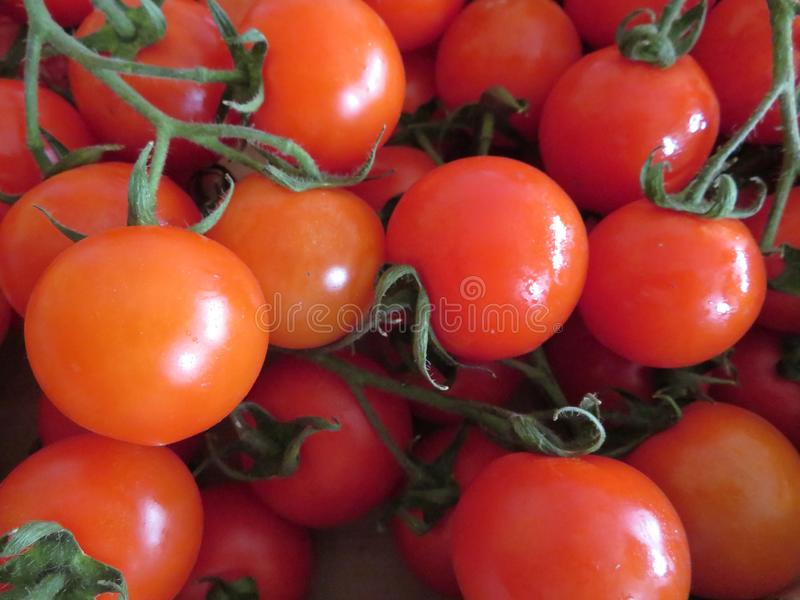 De heerlijke tomaten met een goed ziet en ongelooflijke kleur eruit stock foto