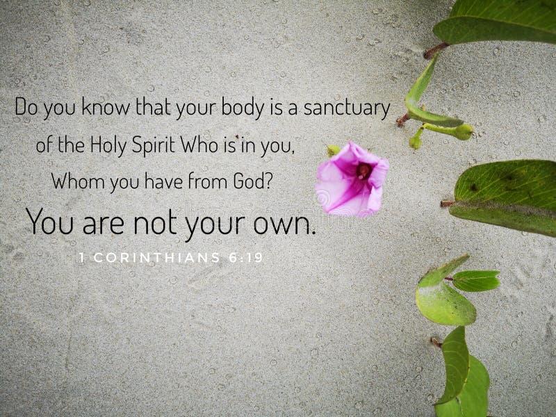 De Heilige Geest van het bijbelvers van de dag, wordt aangemoedigd in het dagelijkse levensontwerp voor Christendom stock fotografie
