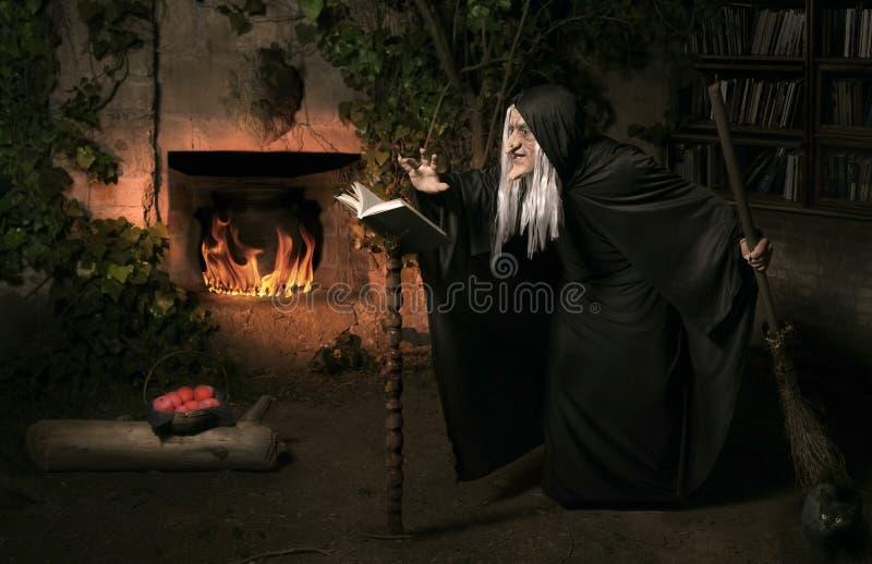 De heks van Halloween stock foto