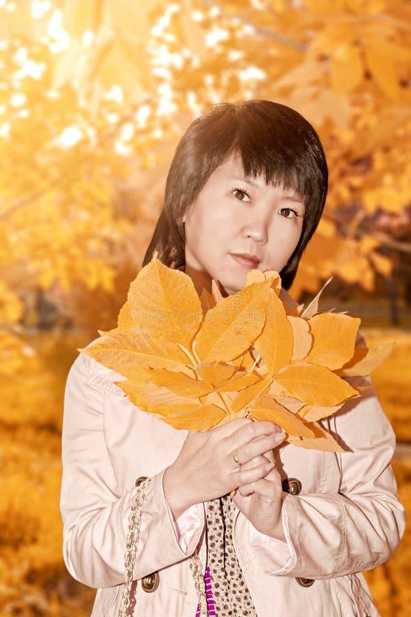 In de heldere kleuren warme herfst stock afbeelding