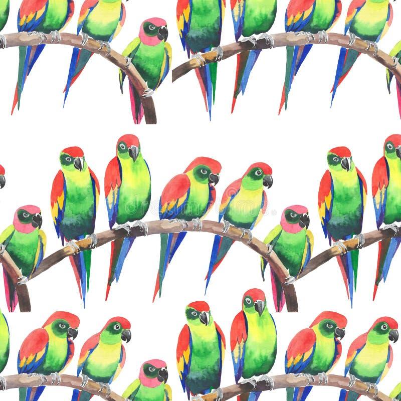 De heldere kleurrijke leuke mooie wildernis tropische gele en groene papegaaien op een waterverf van het takpatroon overhandigen  stock illustratie