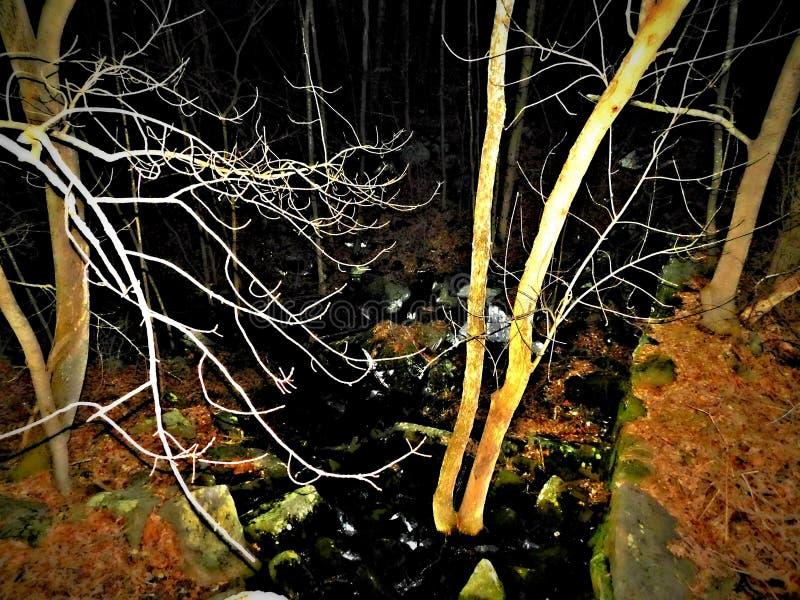 De heldere rivier stock afbeelding