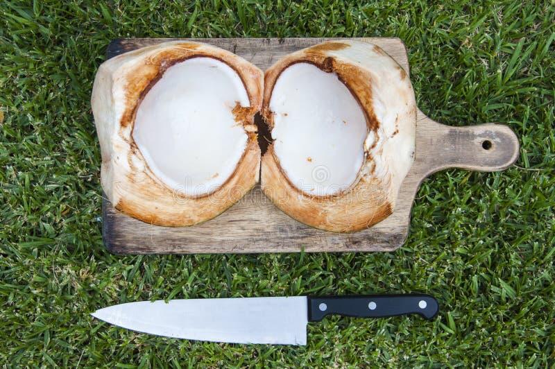 De helft van kokosnoot royalty-vrije stock foto