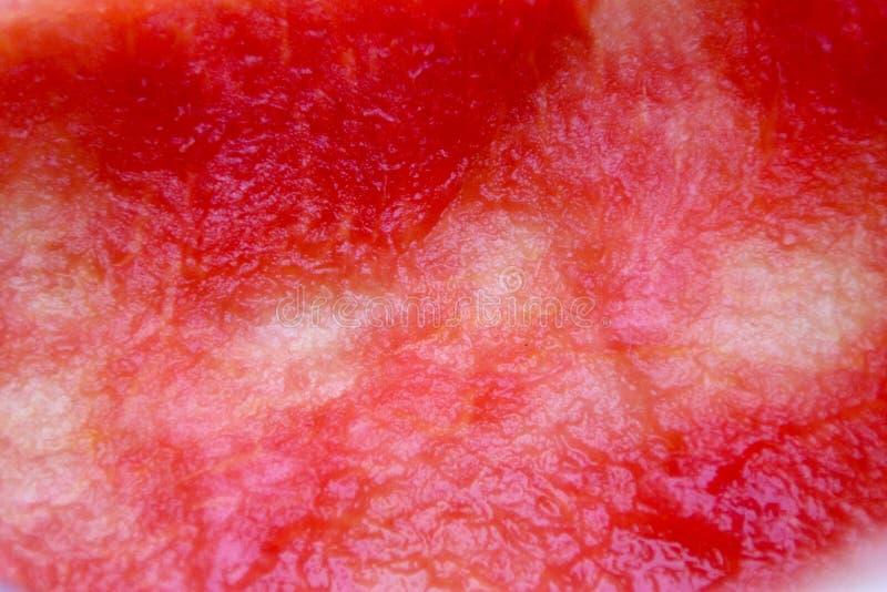 De helft van de rode watermeloen werd gegeten stock afbeeldingen