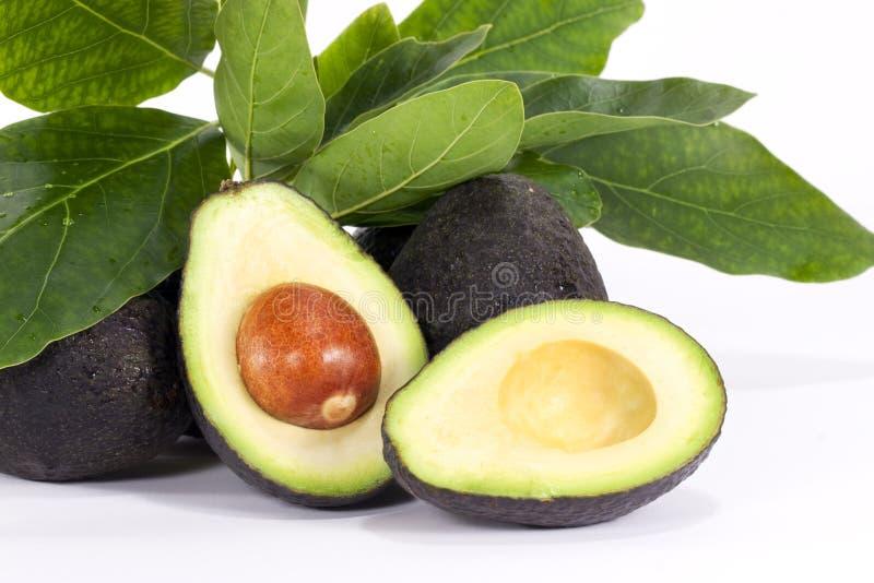 De Helften van de avocado royalty-vrije stock fotografie