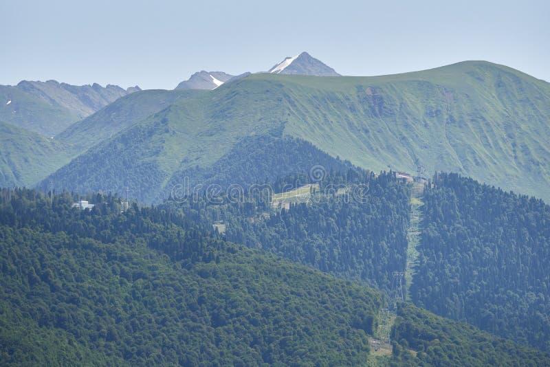 De helling van een hoge die berg, met groen bos in de zomer op een achtergrond van duidelijke hemel wordt behandeld stock afbeeldingen