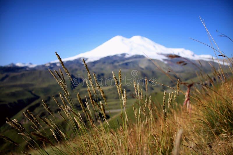 De hemel van de aard Groene Hemel Schone Foto Als achtergrond royalty-vrije stock afbeeldingen
