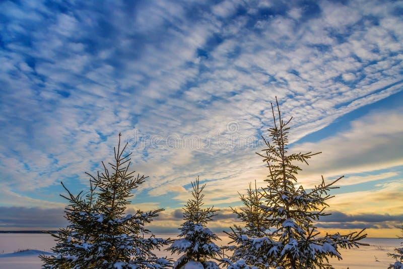 Download De hemel van de winter stock afbeelding. Afbeelding bestaande uit setting - 54085665