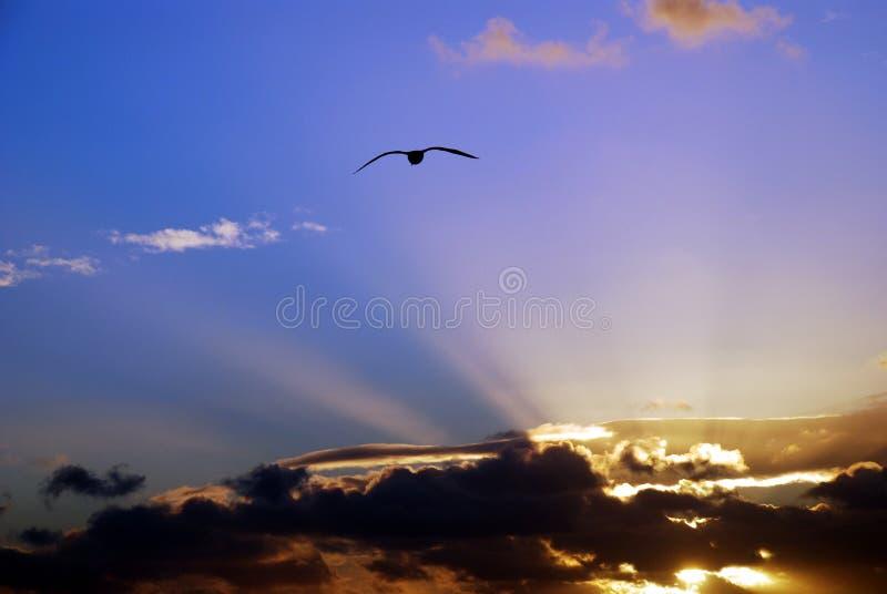 De hemel van de zonsondergang royalty-vrije stock fotografie