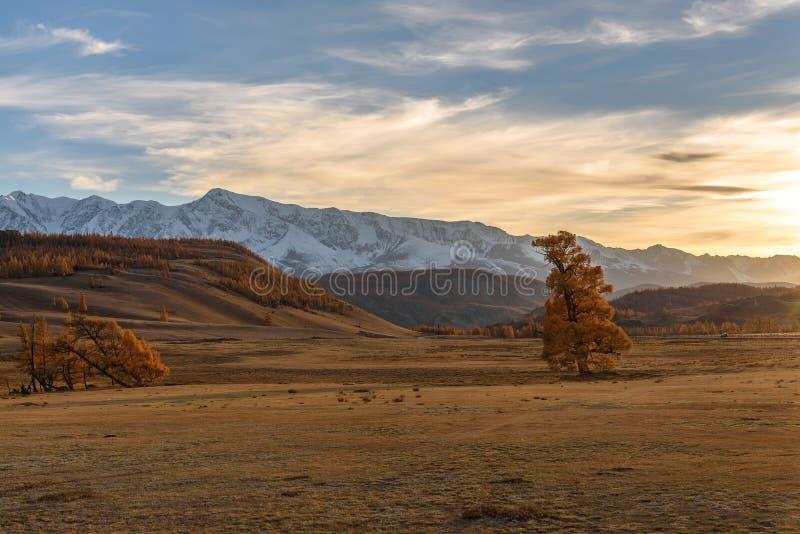 De hemel van de de herfstzonsondergang van de bergenboom royalty-vrije stock foto