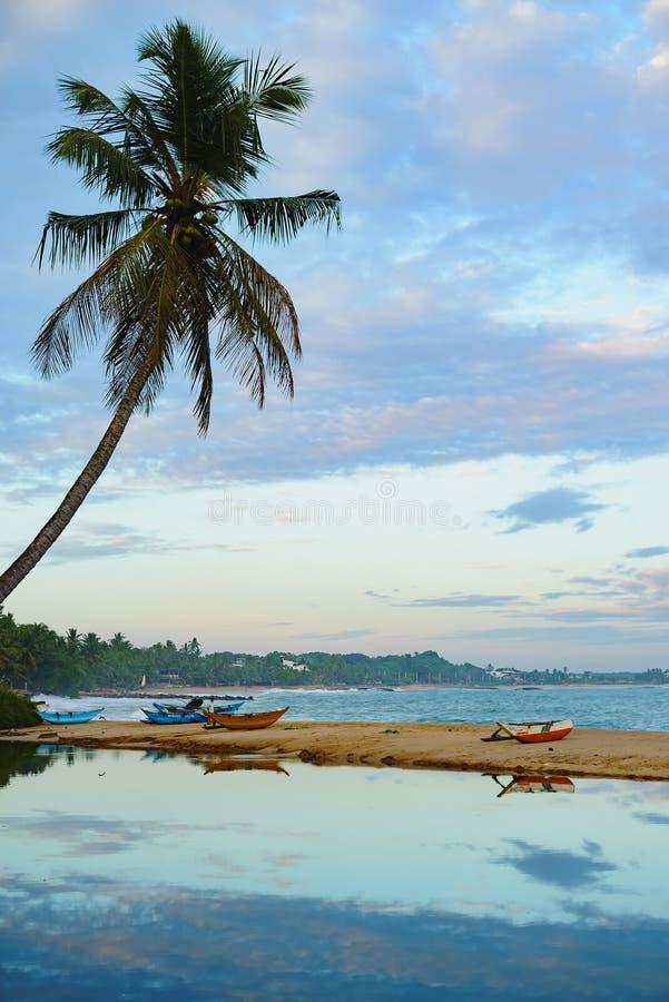 De hemel van de de palmboot van de strandzonsondergang die in water wordt weerspiegeld royalty-vrije stock foto