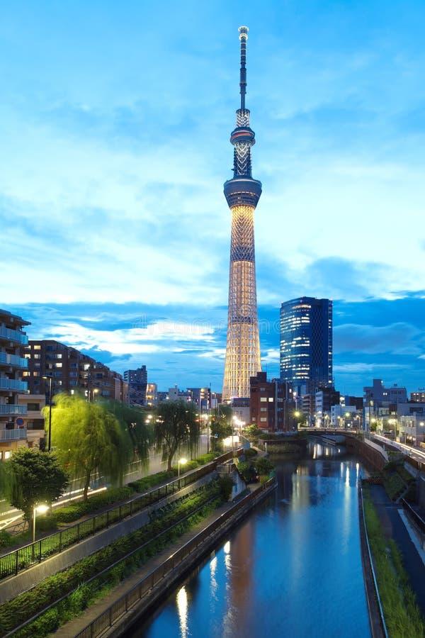 De hemelboom van Tokyo royalty-vrije stock afbeelding