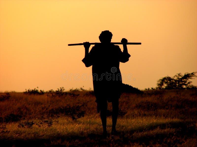 De Herder van de zonsondergang royalty-vrije stock afbeeldingen