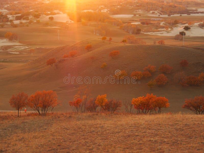 De herfst stock foto