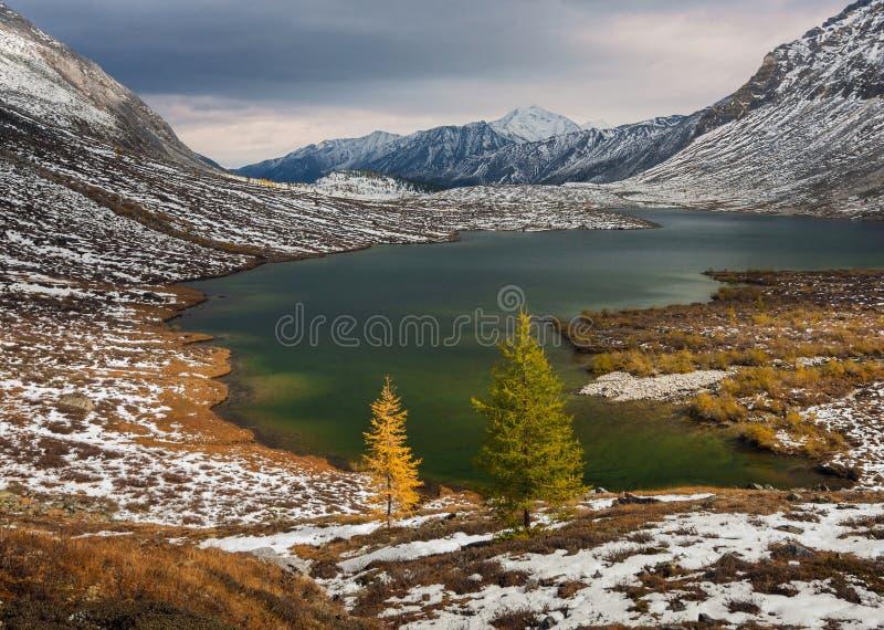 De herfst in bergen stock fotografie