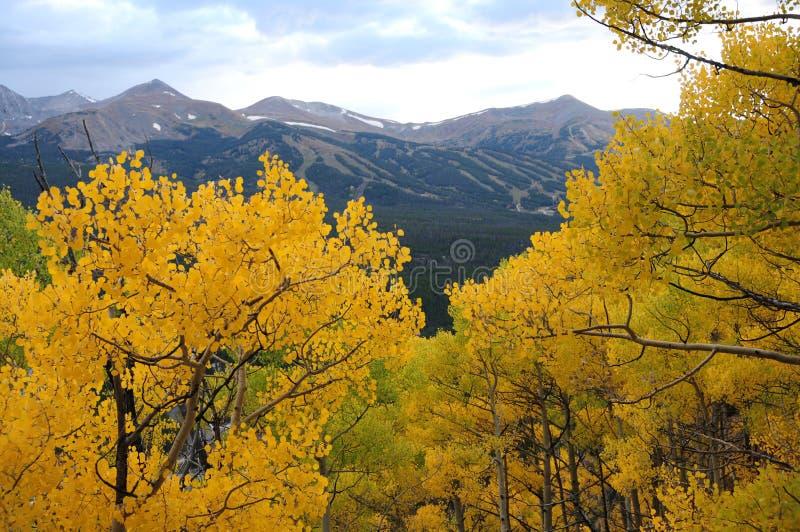 De herfst in Bergen Breckenridge royalty-vrije stock foto