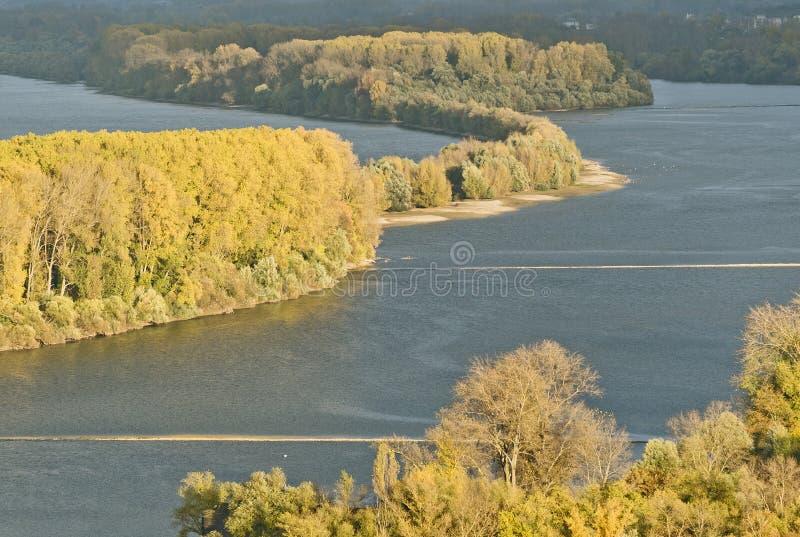 De herfst bij de rivier Rijn dichtbij Bingen stock foto