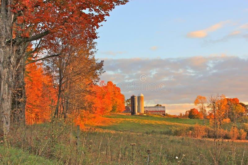 De herfst bij het Landbouwbedrijf stock foto's