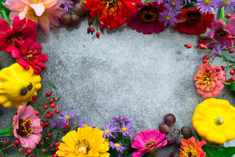 De herfst bloeit kader, plaats voor tekst royalty-vrije stock foto
