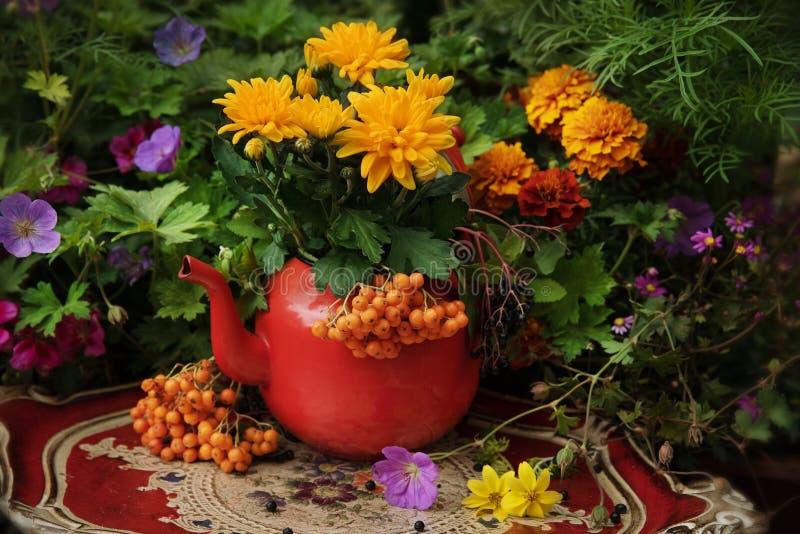 De herfst bloeit openlucht royalty-vrije stock afbeeldingen