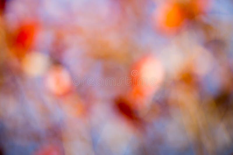De herfst bokeh. stock afbeelding