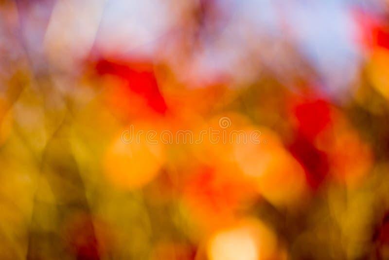 De herfst bokeh. royalty-vrije stock fotografie