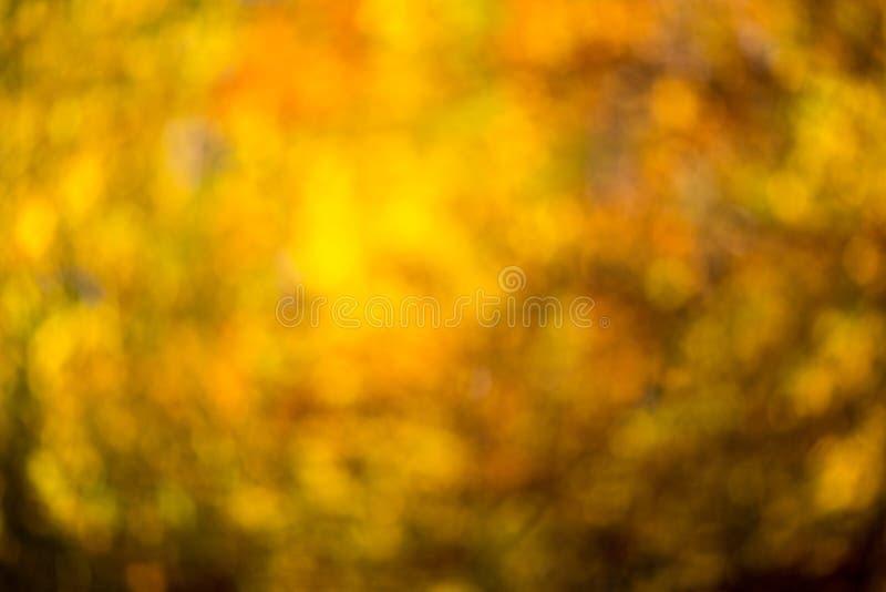 De herfst bokeh stock afbeeldingen