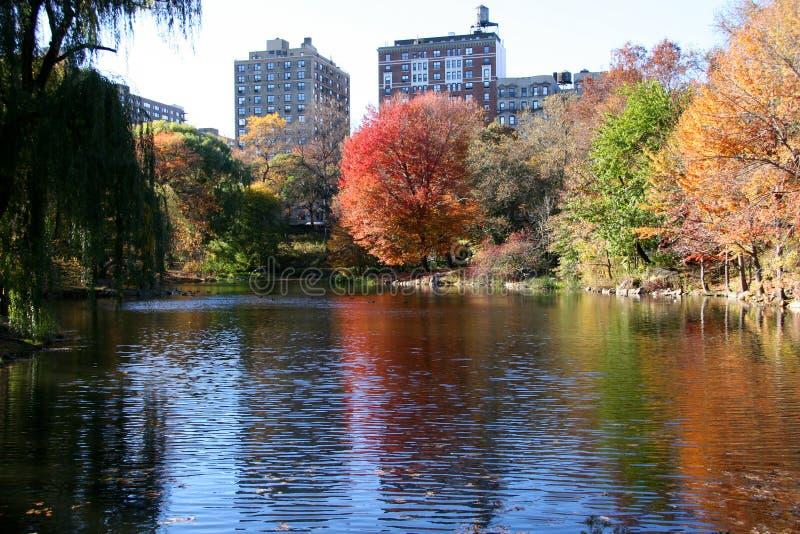 De herfst in centraal park, New York stock foto's