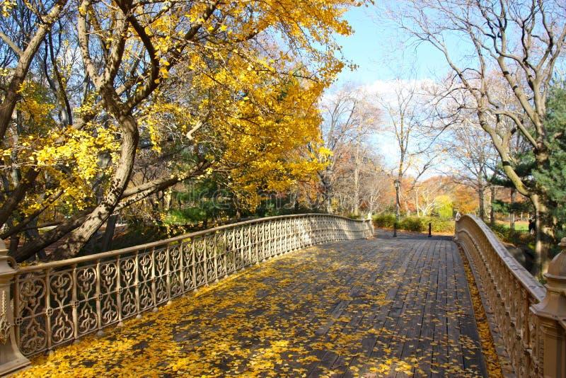 De herfst in Central Park, New York stock foto