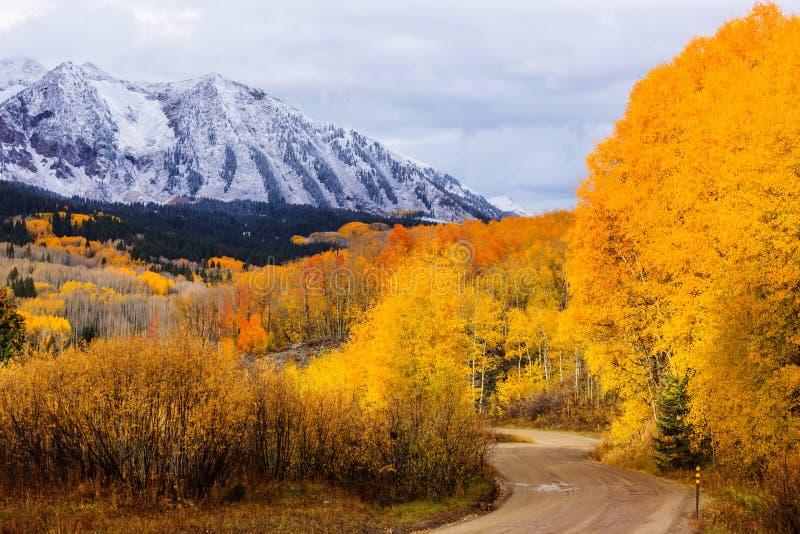 De herfst in Colorado stock foto's