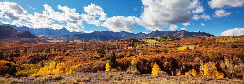 De herfst in Colorado royalty-vrije stock afbeelding