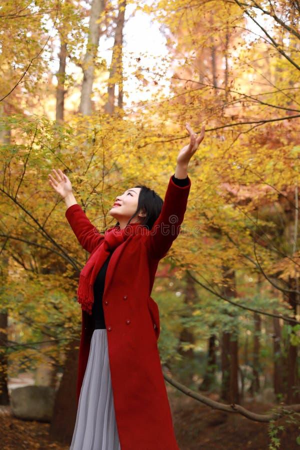 De herfst/dalings stelt de mooie vrouw gelukkig in vrije vrijheid in de herfstpark royalty-vrije stock foto's