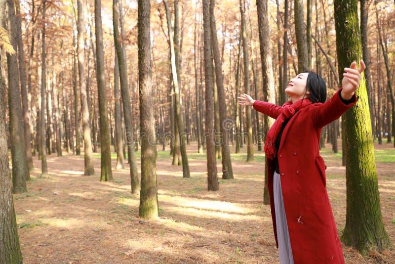 De herfst/dalings stelt de mooie vrouw gelukkig in vrije vrijheid in de herfstpark omhelst aard stock afbeeldingen
