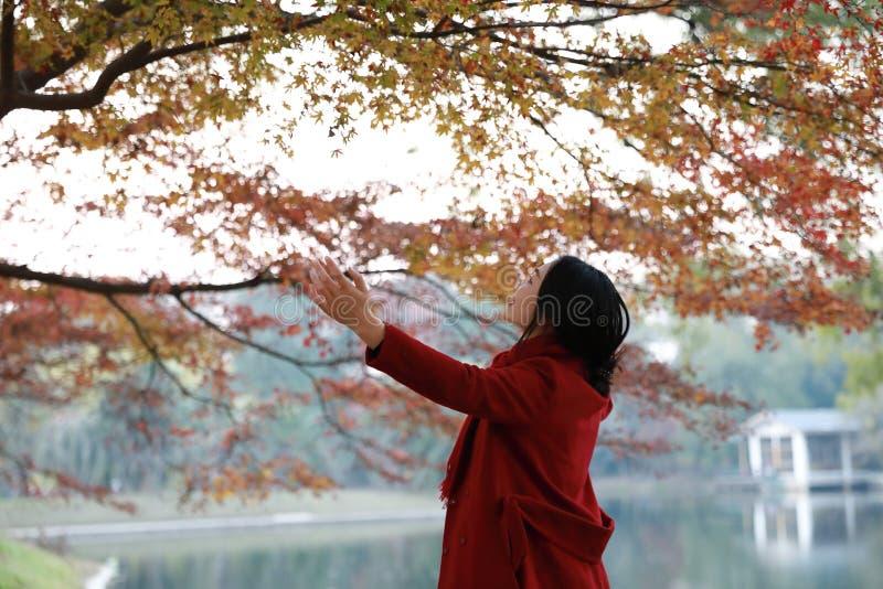 De herfst/dalings de vrouw gelukkig in vrije vrijheid stelt stock fotografie
