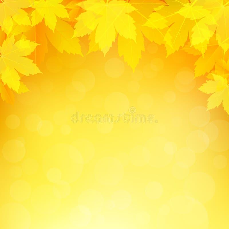 De herfst, dalingsachtergrond met heldere gouden esdoornbladeren stock foto's