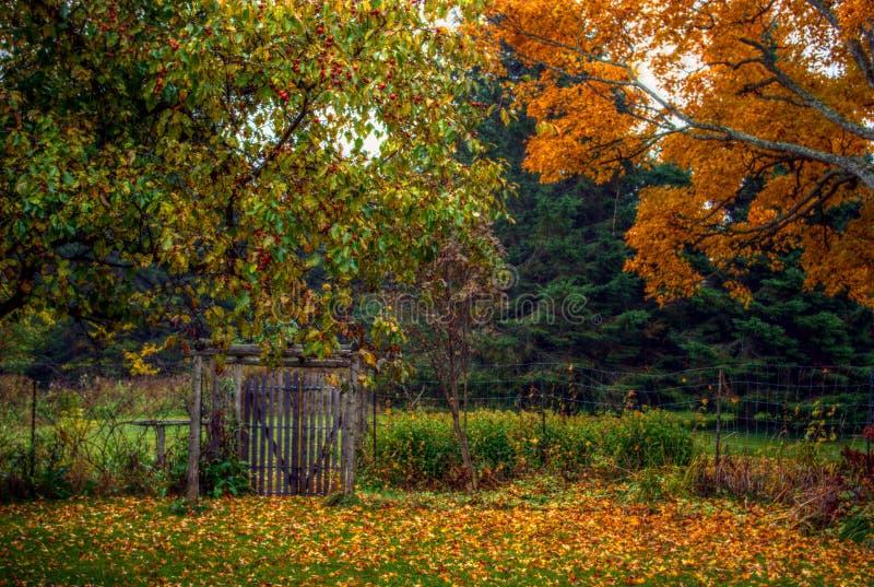 De herfst/Dalingsscène met bomen en rustieke omheining royalty-vrije stock foto